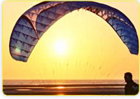 Paraglider Wings